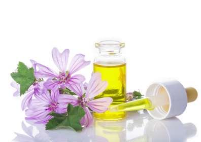 Olivenöl in der Kosmetik